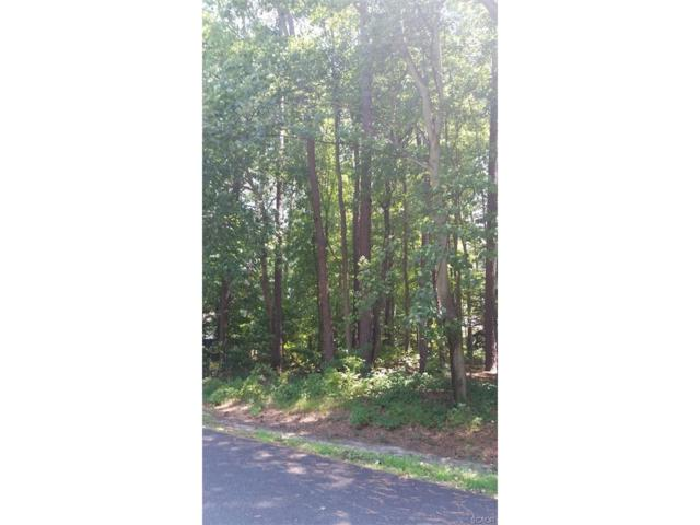 Lot 3, Section F Prince Georges Drive, Dagsboro, DE 19939 (MLS #702138) :: The Rhonda Frick Team