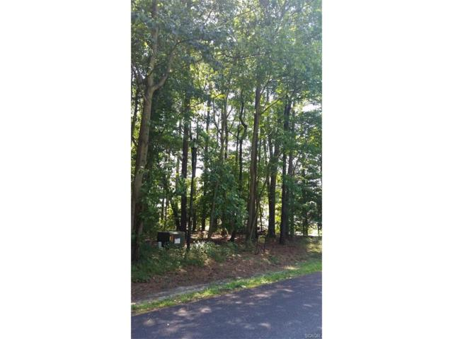 Lot 5, Section F Prince Georges Drive, Dagsboro, DE 19939 (MLS #702140) :: The Rhonda Frick Team
