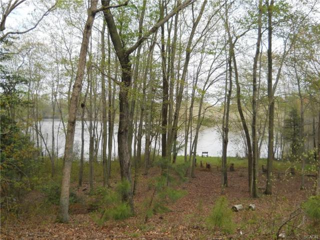 Lot 4 Waterview Dr., Seaford, DE 19973 (MLS #704535) :: Barrows and Associates