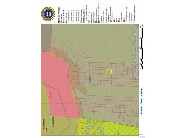 lot 10 Blk B Sandy Beach Rd #10, Dagsboro, DE 19966 (MLS #712863) :: The Don Williams Real Estate Experts
