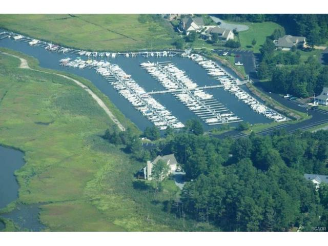 Slip F-12 33144 Colony Drive F-12, Dagsboro, DE 19939 (MLS #715400) :: The Allison Stine Team