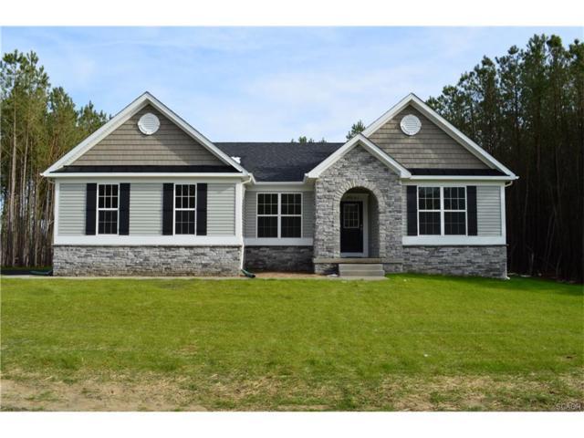 25164 Harmony Woods, Millsboro, DE 19966 (MLS #715689) :: Barrows and Associates