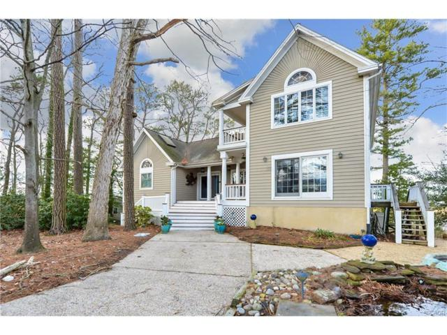 35739 Sea Gull Road, Selbyville, DE 19975 (MLS #716091) :: The Don Williams Real Estate Experts