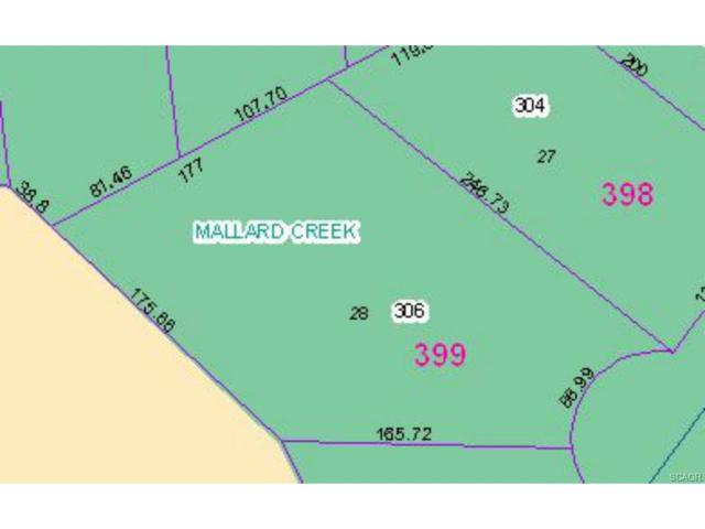 Lot 28 West Manor Court, Dagsboro, DE 19939 (MLS #716395) :: The Don Williams Real Estate Experts