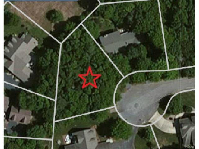 Lot 27 Deer Court, Dagsboro, DE 19939 (MLS #720376) :: Barrows and Associates