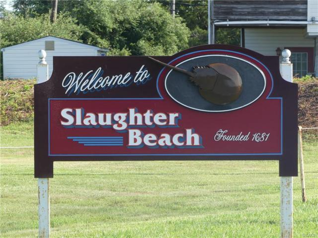 Lot 45 Cedar Beach E Side Hwy 204, Slaughter Beach, DE 19963 (MLS #721599) :: Atlantic Shores Realty