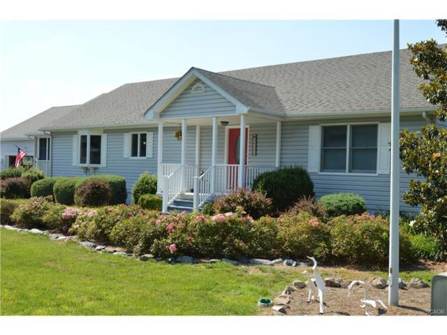38496 Hemlock Drive, Frankford, DE 19945 (MLS #721892) :: The Don Williams Real Estate Experts
