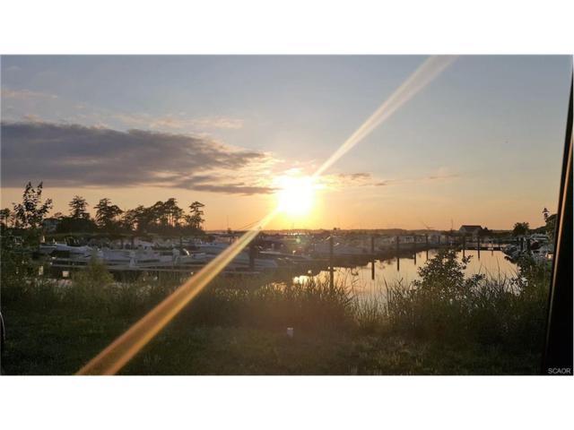 F-15 Bay Colony Marina, Dagsboro, DE 19939 (MLS #722909) :: The Don Williams Real Estate Experts