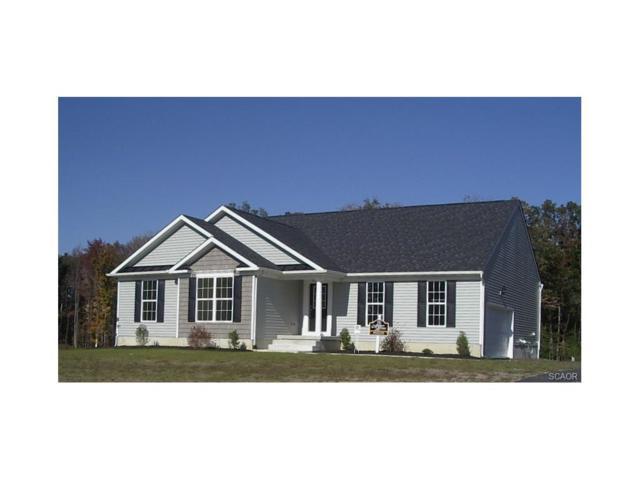 26530 Springhaven, Milton, DE 19968 (MLS #724280) :: Barrows and Associates