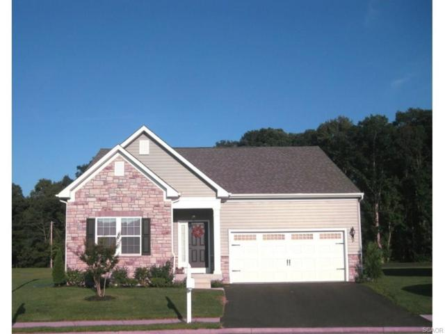 449 Tunbridge Court, Millsboro, DE 19966 (MLS #724929) :: The Don Williams Real Estate Experts