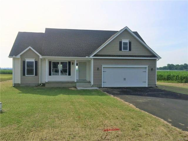 22711 Church Creek, Lincoln, DE 19960 (MLS #725211) :: The Don Williams Real Estate Experts