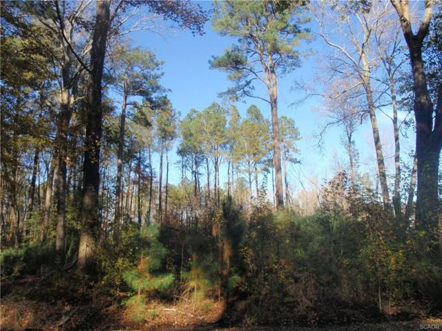 Lot 12 Pine Grove Lane #12, Ocean View, DE 19970 (MLS #725474) :: Barrows and Associates