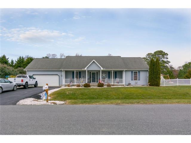13 Swiggetts Mill Rd, Lincoln, DE 19960 (MLS #726186) :: The Don Williams Real Estate Experts