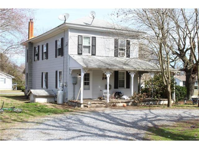18739 Greely, Lincoln, DE 19960 (MLS #728177) :: The Don Williams Real Estate Experts