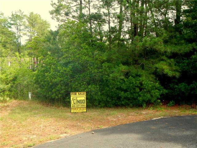 Lot 12 Burrwood, Millsboro, DE 19966 (MLS #583161) :: Barrows and Associates