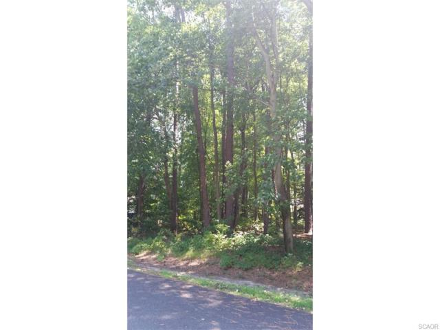 Lot 3, Section F Prince Georges Drive, Dagsboro, DE 19939 (MLS #702138) :: RE/MAX Coast and Country