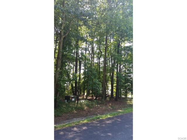 Lot 5, Section F Prince Georges Drive, Dagsboro, DE 19939 (MLS #702140) :: RE/MAX Coast and Country