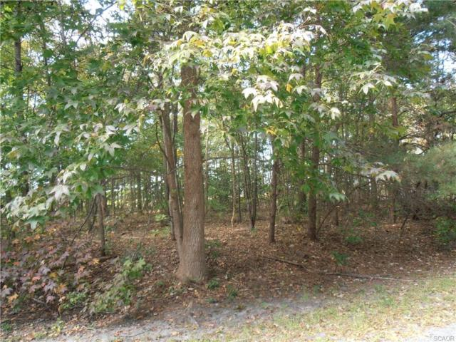 Lot 40 Block A Avalon Drive #40, Georgetown, DE 19947 (MLS #704272) :: The Don Williams Real Estate Experts
