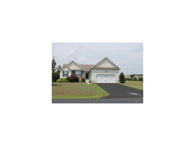 7731 Sugar Maple Way, Milford, DE 19963 (MLS #705532) :: Barrows and Associates