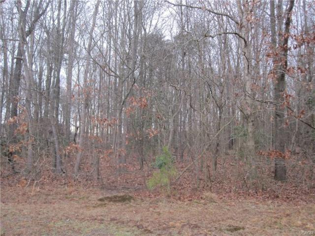 Lot 39 Peterkins Road #39, Georgetown, DE 19947 (MLS #716940) :: The Don Williams Real Estate Experts