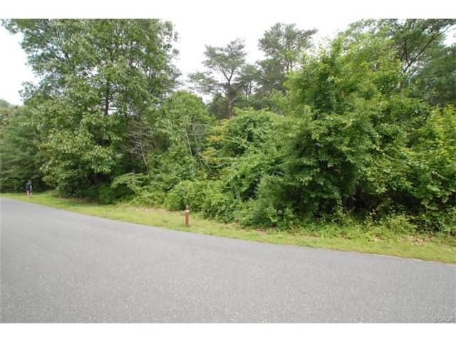 Lot 81 Greenleaf Lane #81, Seaford, DE 19973 (MLS #721140) :: The Rhonda Frick Team