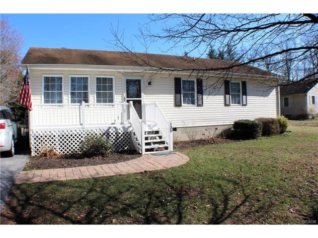 135 Prince Georges Dr., Dagsboro, DE 19939 (MLS #727191) :: The Don Williams Real Estate Experts