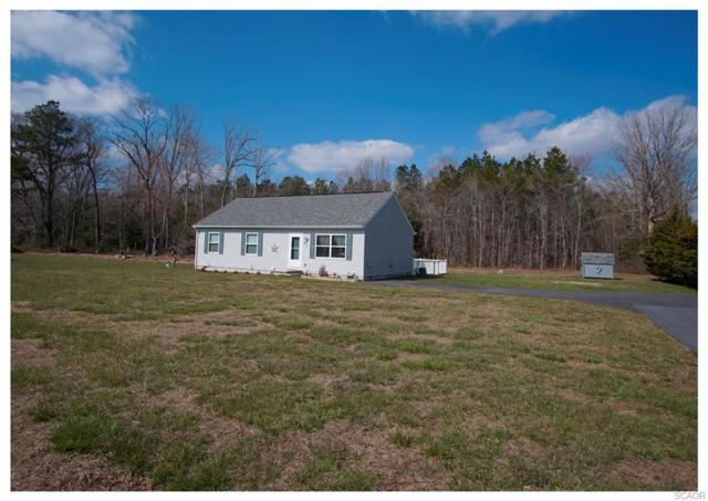 26316 Gabby Lane, Georgetown, DE 19947 (MLS #728526) :: The Don Williams Real Estate Experts