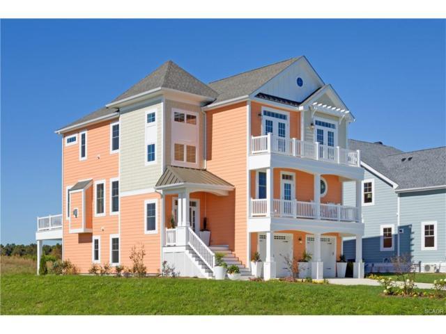 33432 Marina Bay Circle (Catalina Sfh), Millsboro, DE 19966 (MLS #623039) :: Barrows and Associates