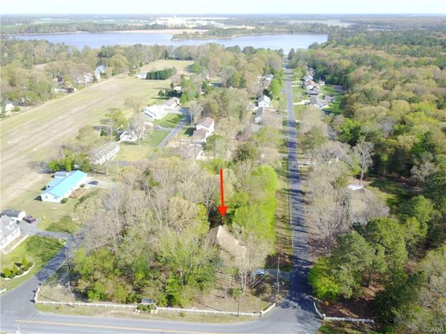 201 Sandy Beach, Dagsboro, DE 19939 (MLS #719321) :: The Don Williams Real Estate Experts