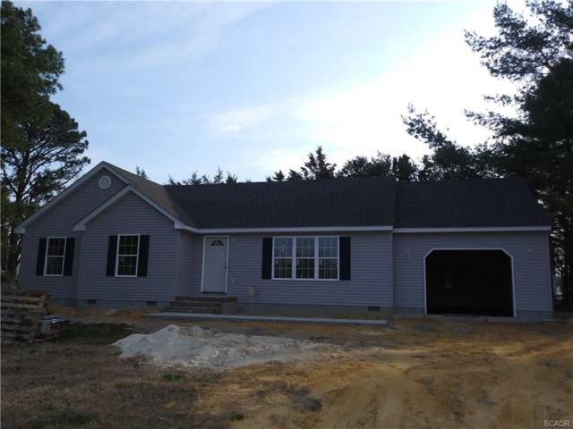 221 Lewis Drive, Laurel, DE 19956 (MLS #727848) :: Barrows and Associates