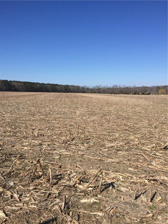 lot 9 Lawson W, Georgetown, DE 19947 (MLS #728938) :: RE/MAX Coast and Country