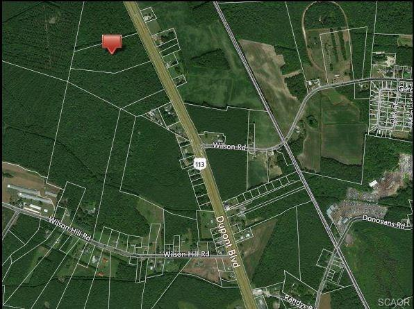 13.29 acres S. Dupont Highway, Georgetown, DE 19947 (MLS #727612) :: The Don Williams Real Estate Experts