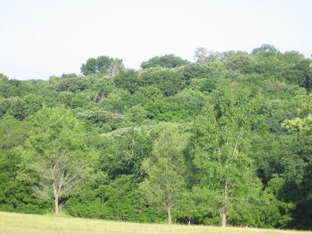 LOT 67 Eagle Ridge Acres, MISSOURI VALLEY, IA 51555 (MLS #20-1782) :: Berkshire Hathaway Ambassador Real Estate