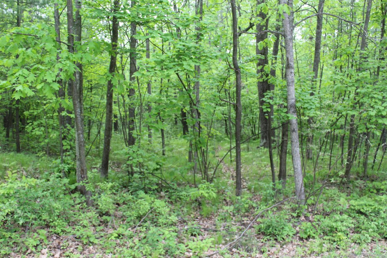 Lot 116 Indian Drive - Photo 1