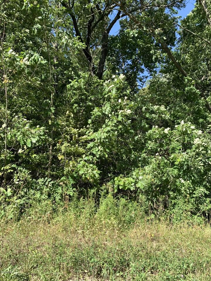 4646 Wynnewood Drive - Photo 1