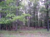 Meadow Wood - Photo 7