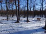 70.66 Acres M-55 - Photo 2