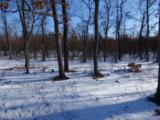 28.88 Acres Eastlake Rd - Photo 1