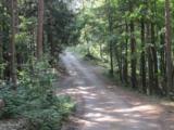 8972 Hidden Harbor Drive - Photo 26