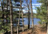 8205 Perch Lake Drive - Photo 3