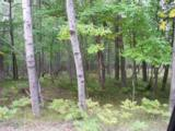 6802 White Pine Drive - Photo 1