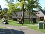 6802 White Pine Drive - Photo 3