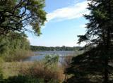 6573 Heron Bay Drive - Photo 1