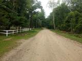 6325 Trail Ridge Road - Photo 41