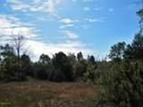 30 Acres Quarterline Road - Photo 12