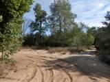 30 Acres Quarterline Road - Photo 15