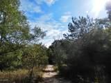 30 Acres Quarterline Road - Photo 16