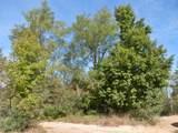 30 Acres Quarterline Road - Photo 19