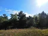30 Acres Quarterline Road - Photo 4