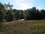 30 Acres Quarterline Road - Photo 5